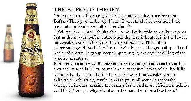 buffallotheory